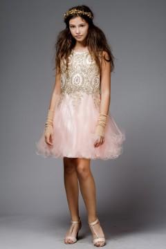Chandra Dress-Pink