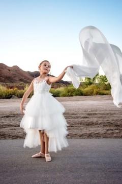 Abella Dress